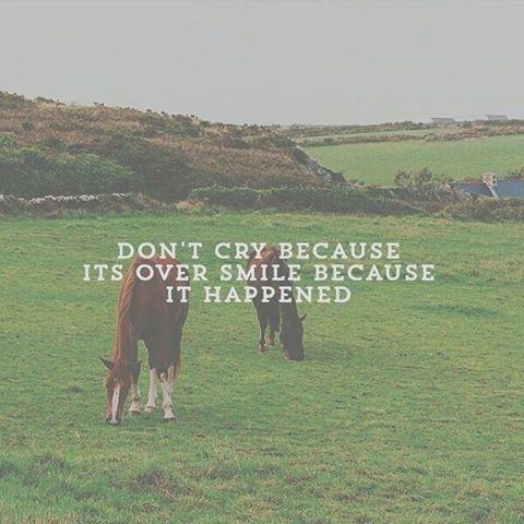5. 別為已經發生了的事情哭泣,因為不好的事情已經完了。