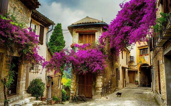 1. 法國普羅旺斯的一個小鎮