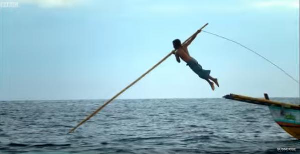 槍手在船上瞄準抹香鯨後,拿著標槍一躍進海里刺進鯨魚身體裡