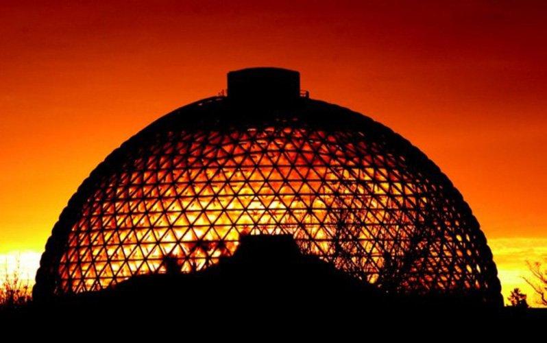 1. 紅麥庫姆斯野生動物園