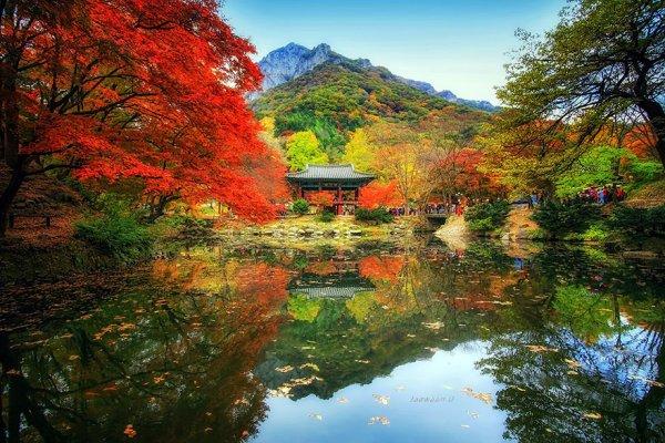 秋季系泊 백양사 쌍계루의 가을..