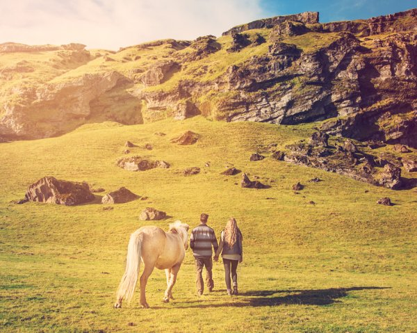 他们爬过了冰山, 穿过瀑布底下,探索苔藓世界, 骑马玩乐以及在温泉里...