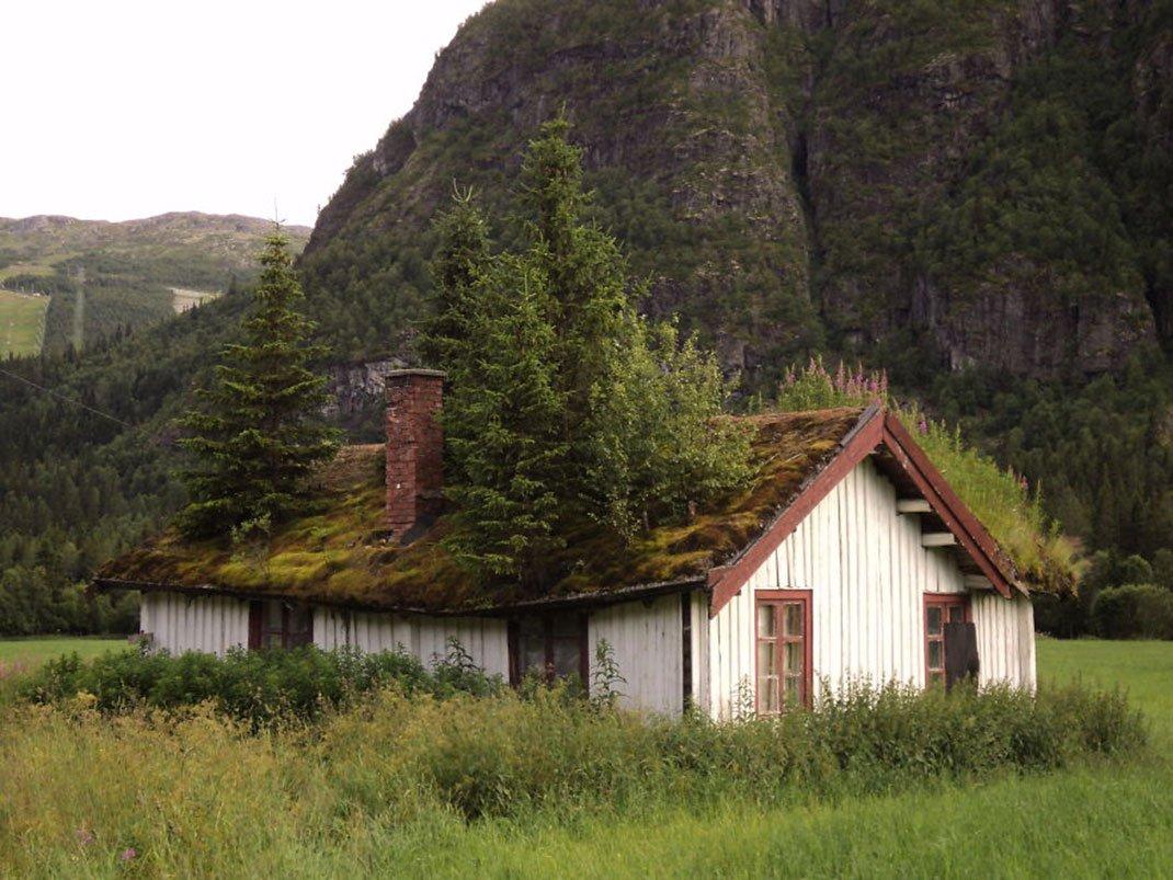 3. 我相信白雪公主在此居住在某個時候......或者至少是相形見絀。