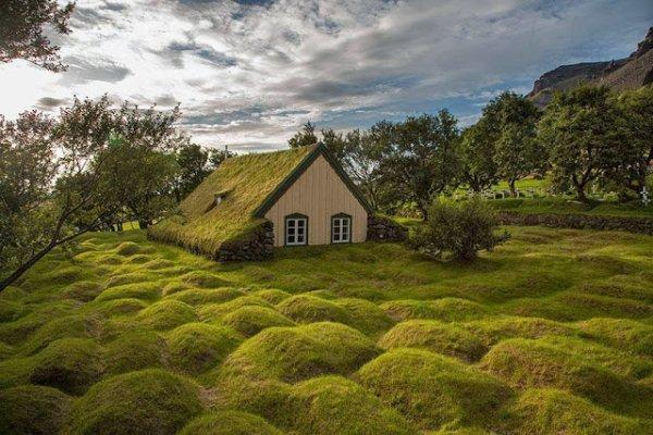 四周由布滿青草的土堆圍繞的草屋