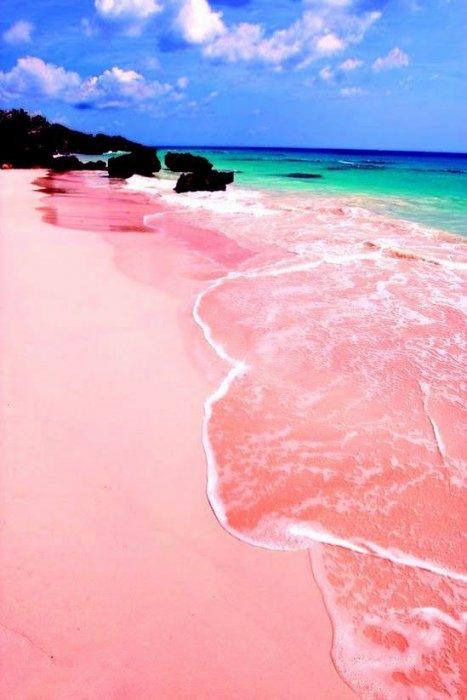 11. 巴哈馬的粉紅海灘