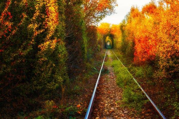 2. 愛的隧道