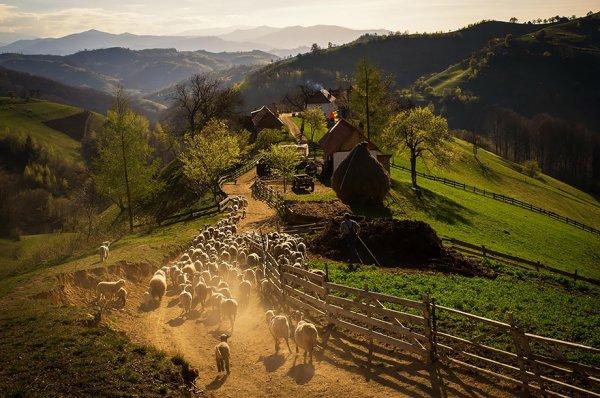 19. 春日的午後, 霍爾巴夫村的山莊