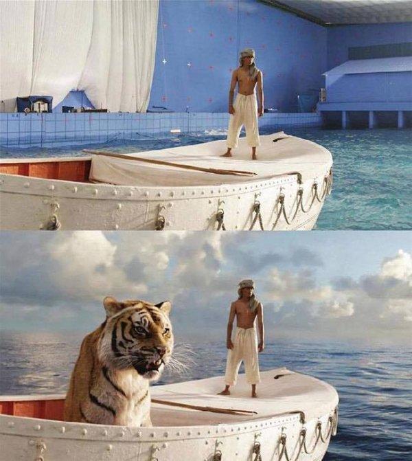 老虎又是怎麼跑出來的呢