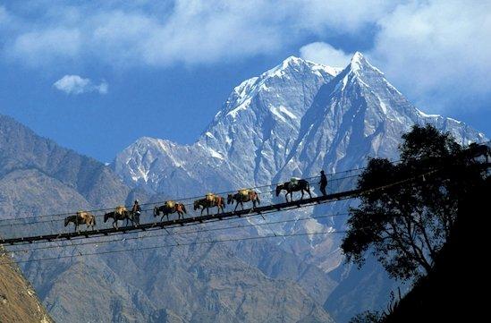 11. 尼泊爾