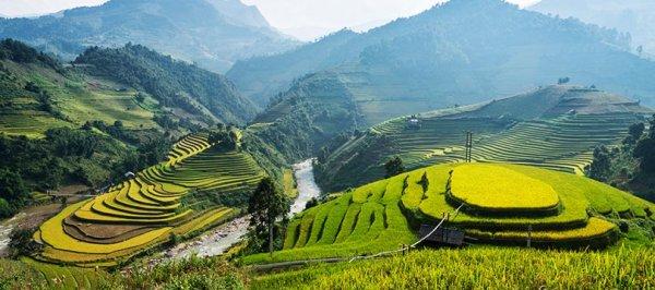而越南最受歡迎的啤酒「Bia Hoi」,一品脫還不到1美元。 越南著名的梯田...