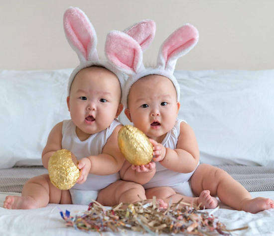今年的復活節兔子招收了小助手