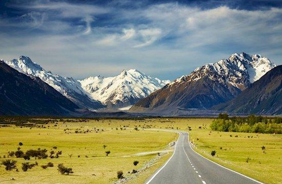8. 紐西蘭