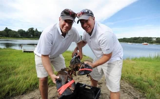 美國麻省(Massachusetts)有一對孿生兄弟,日前在魚市場買下一隻重達22磅、...