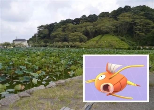 《Pokémon Go》推出後,頻頻傳出因遊戲引發的各種意外,在日本近日卻是有人...