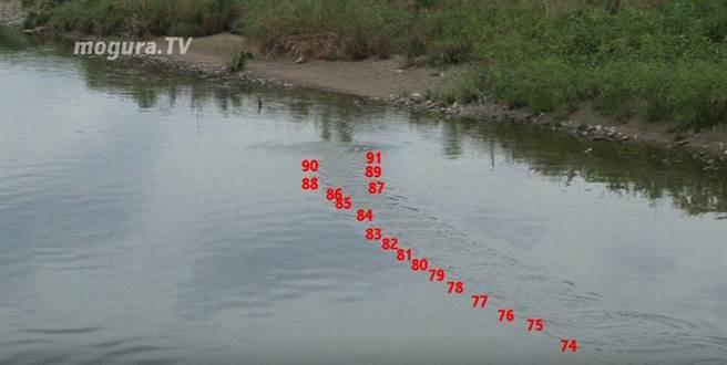 從影片裡我們可以看到,岡坂有矢打水漂的次數總共91下。已打破了史端納...